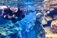 Swim between tectonic Places in Thingvellir National Park