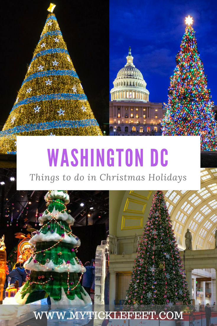Things To Do In DC In Christmas