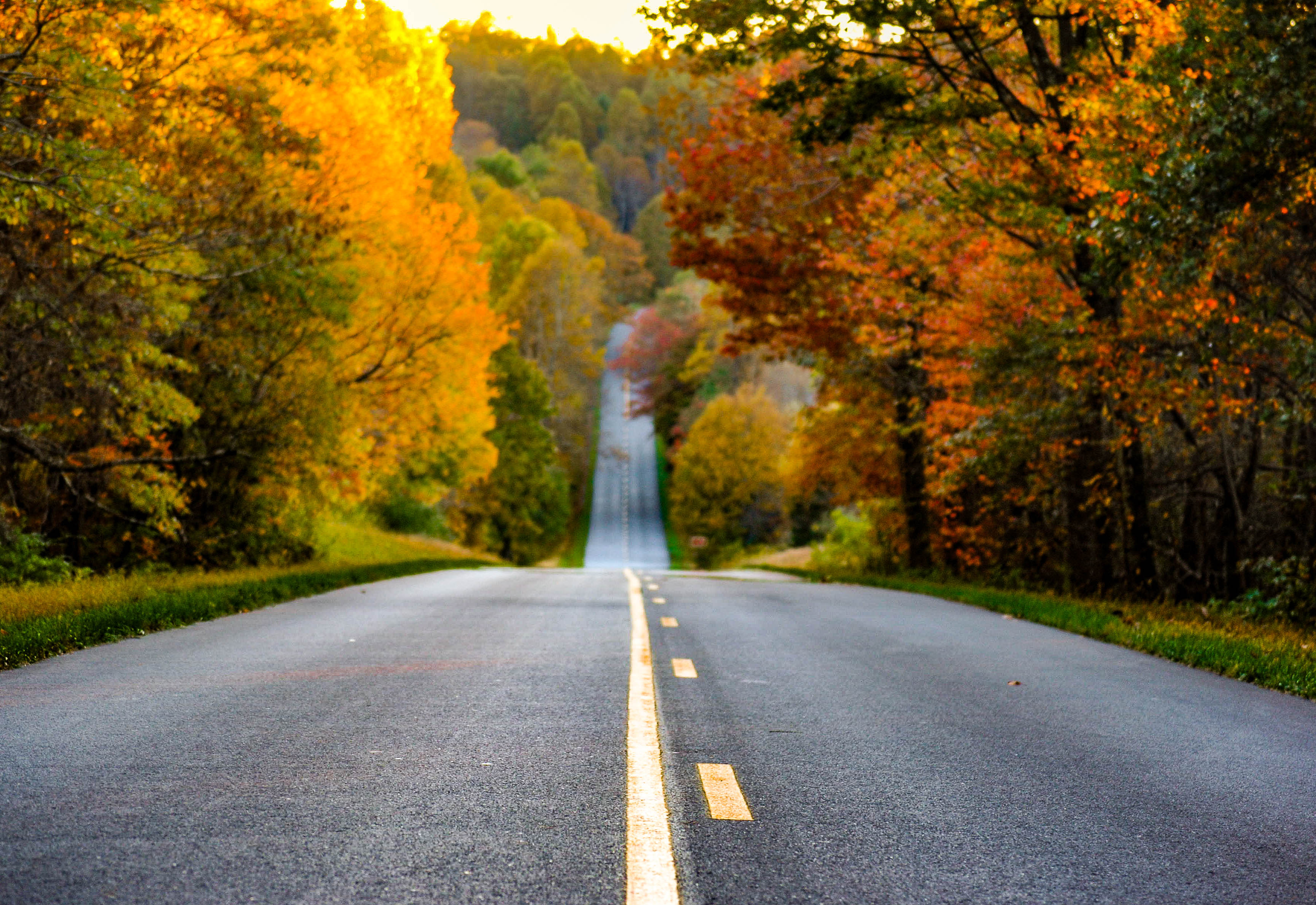 Driving the Blue Ridge Parkway - 3 Day Itinerary for America's Favorite Road Trip